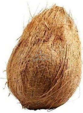 Whole Coconut / Husk Coconut/ Fresh Coconut