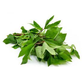 Fresh Sorrel Leaves (Gongura Leaf/ Pulicha Keerai)