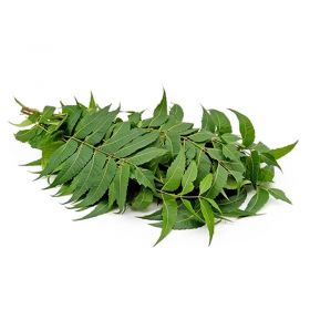 Fresh Neem Leaves (Veppa Ilai) Approx 25g