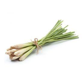 Fresh Thai Lemongrass 30g
