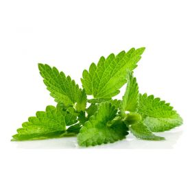 Fresh Mint Leaves (Puthina Leaf)