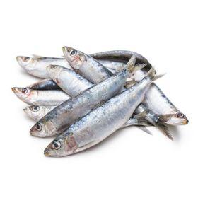 Seelans Superstore sardine / Keeri frozen fish 600G