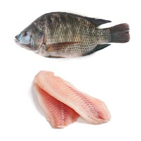 Seelans Superstore Tilapia Fish Fillets 800g